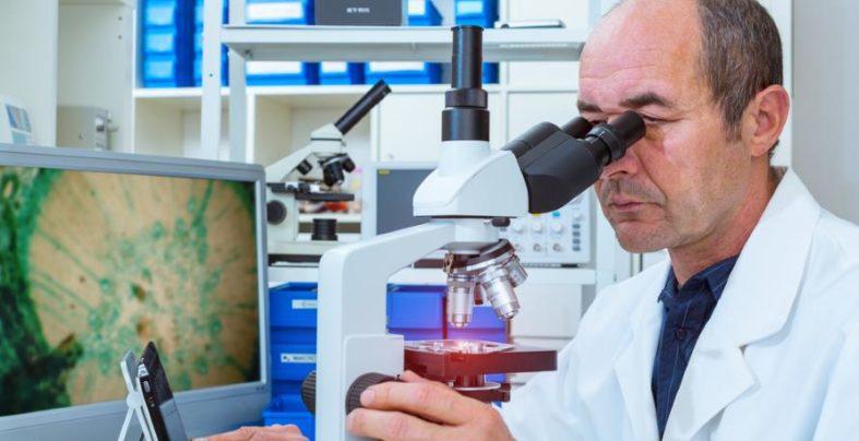 tumomarker - Tumormarker in der Medizin