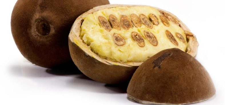 cupuacu butter - Cupuaçu Butter - geeignet für Haut- und Haarpflege