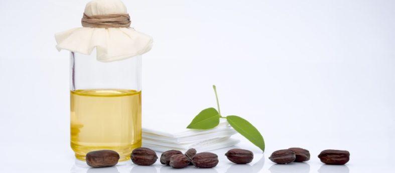 jojobaoel - Jojobaöl - eine Wohltat für die Haut