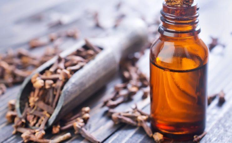nelkenoel - Nelkenöl - Heilöl gegen Entzündungen und Mücken