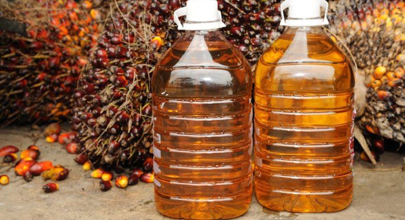 palmoel - Palmöl – vielfältig genutzt aber sehr umstritten