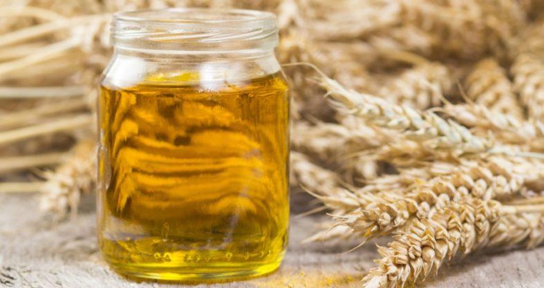 weizenkeimoel - Weizenkeimöl - gesund dank Antioxidantien und Vitaminen