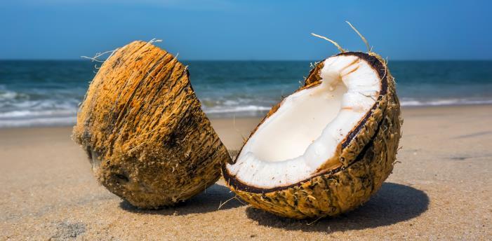 kokosnussoel - Kokosöl - gesund für Haut und Körper