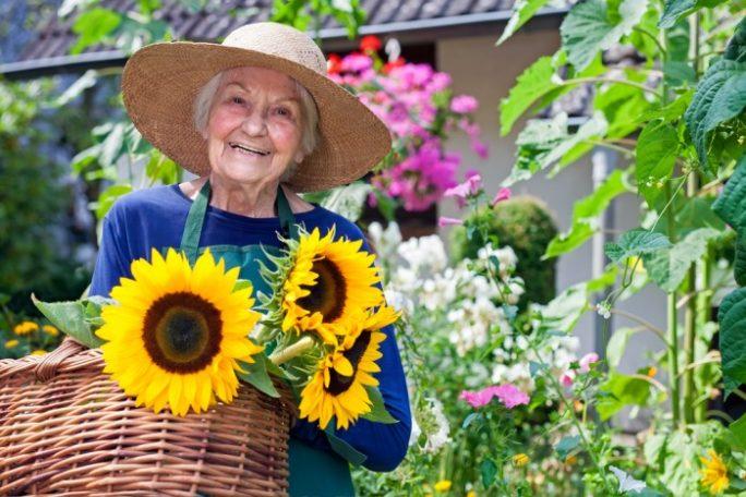 Senioren wohnen eigenständig